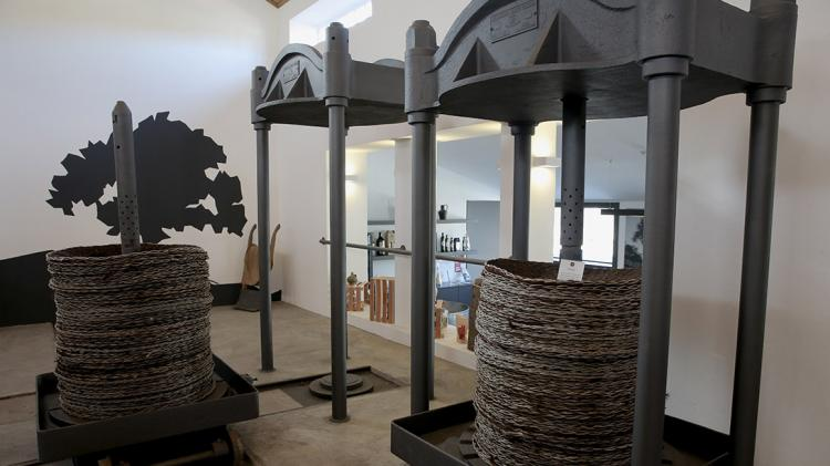 OLIVE OIL MUSEUM